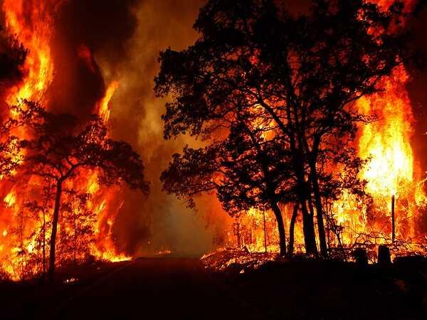 Nằm mơ thấy cháy nhà điềm lành hay giữ