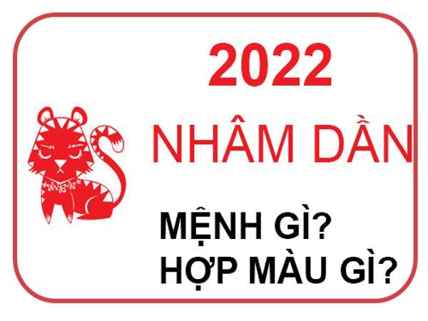 Năm 2022 mệnh gì, năm con gì